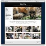 Сайт SibFox